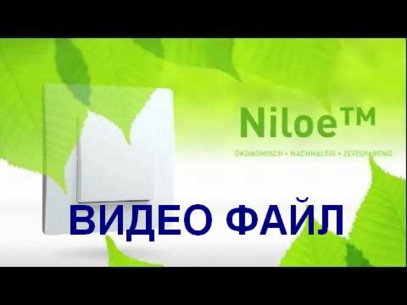 NILOE